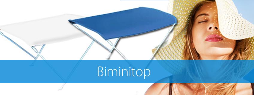 Biminitop